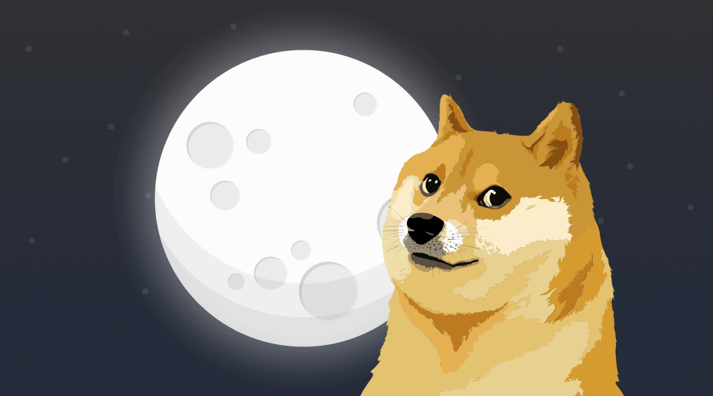 Glossary of cryptocurrency terms. Dogecoin. Article by StealthEX