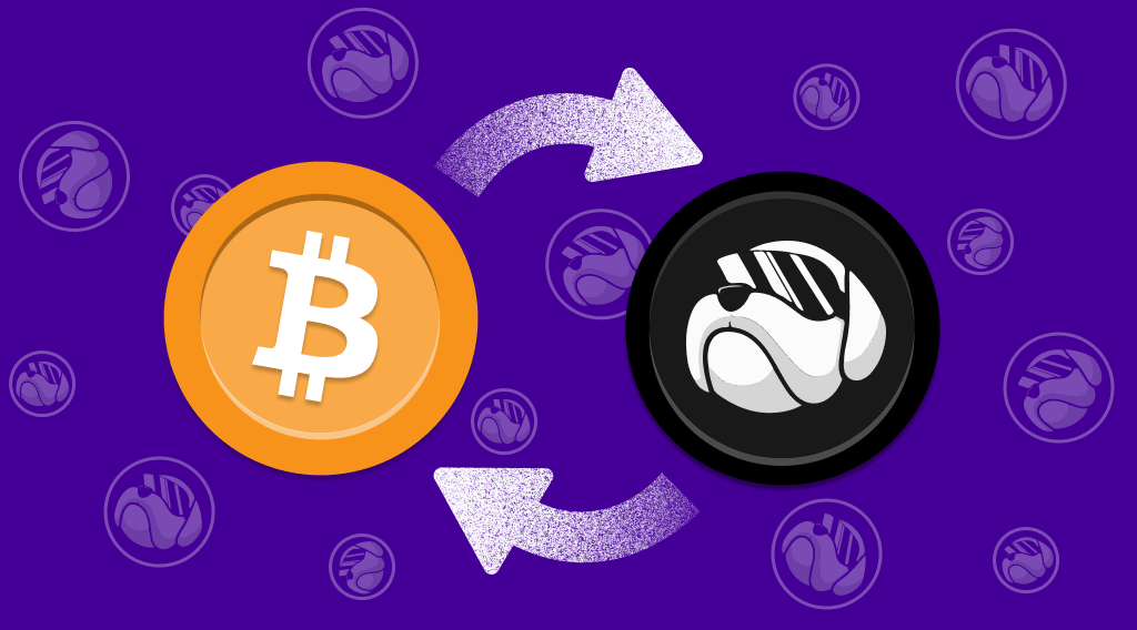 How To Buy HOGE Coin. Article by StealthEX